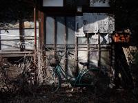 Jounetsu_no_mango