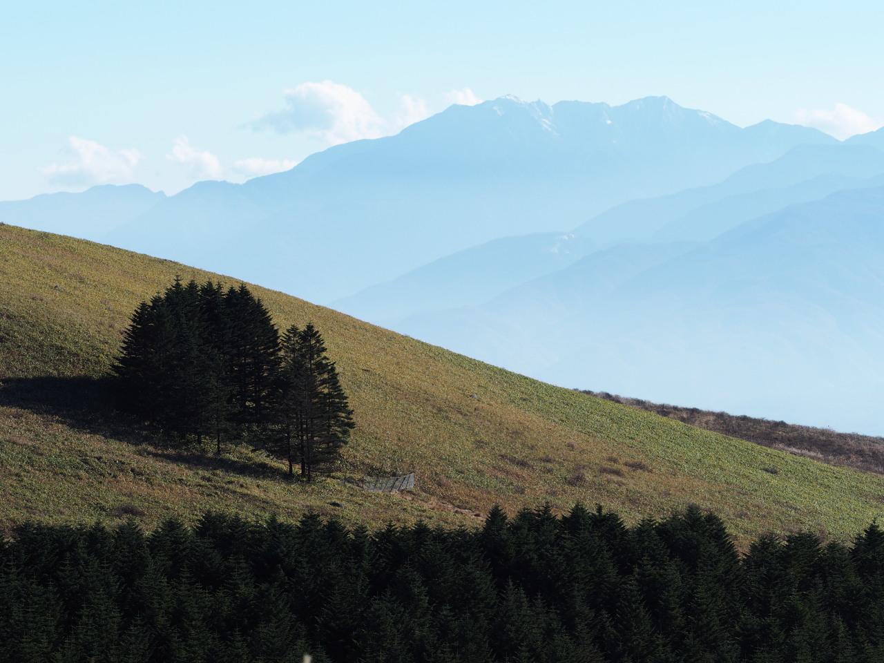 この左側に富士山が隠れてる